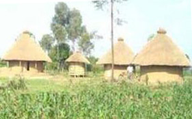 traditional_homestead